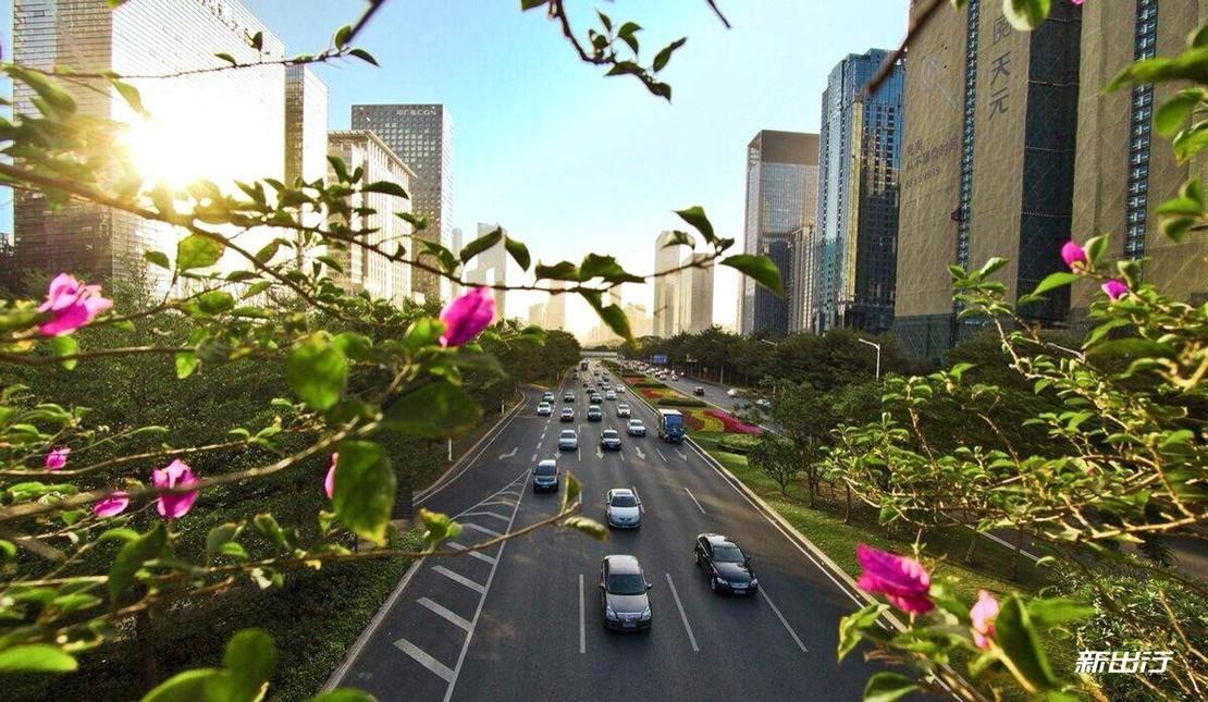 深圳-14.jpg